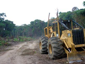 Ghana loosing forests